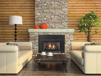 Propane Gas Fireplace Inserts Delivered Installed In Ct Gas Works